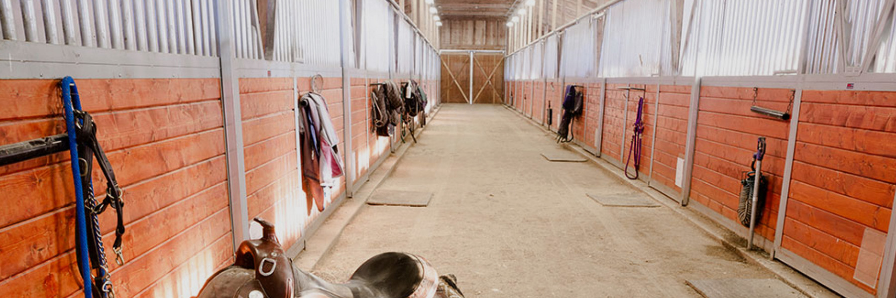 horse stable builder