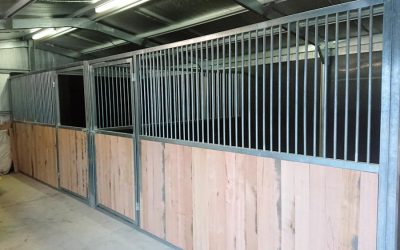 Steel Horse Stable Builder